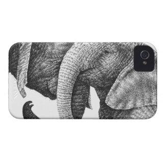 African Elephants Case