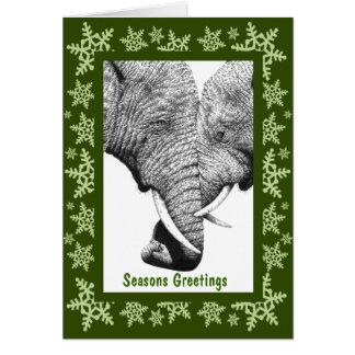 African Elephants Christmas Card