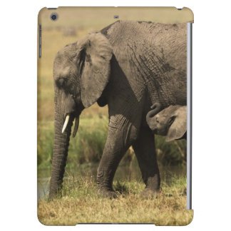 African Elephants Cover For iPad Air