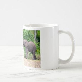 African Elephants Interacting Basic White Mug