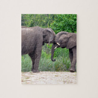 African Elephants Interacting Jigsaw Puzzle