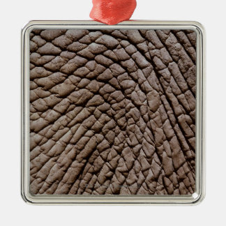 African elephant's (Loxodonta africana) skin Silver-Colored Square Decoration
