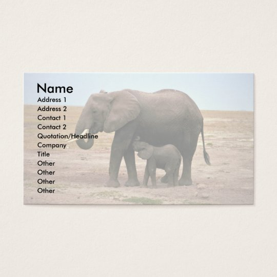 African Elephants - Small Calf Nursing Business Card