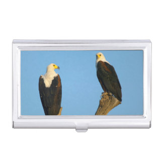 African Fish Eagle (Haliaeetus Vocifer) Business Card Holder