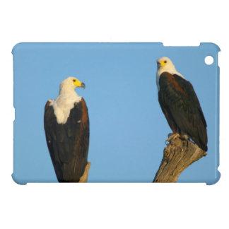 African Fish Eagle (Haliaeetus Vocifer) Case For The iPad Mini