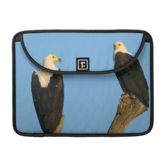 African Fish Eagle (Haliaeetus Vocifer) MacBook Pro Sleeves