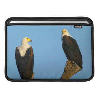 African Fish Eagle (Haliaeetus Vocifer) Sleeve For MacBook Air