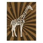 African Giraffe Original Art Post Cards