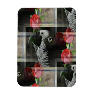 African Grey and Red Roses Rectangular Magnet