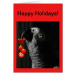 African Grey Christmas Holiday Greeting Card