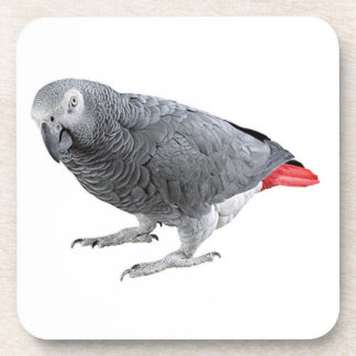 """""""African grey"""" design square coasters"""