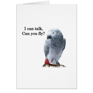 African Grey I can talk, can you fly? Cards