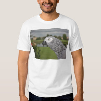 African Grey Lakeside T-shirts