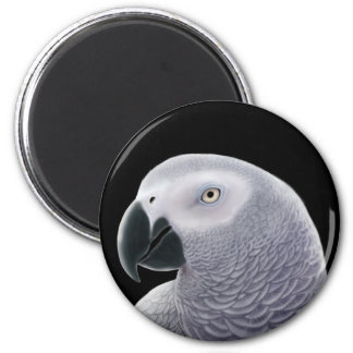 African Grey Magnet