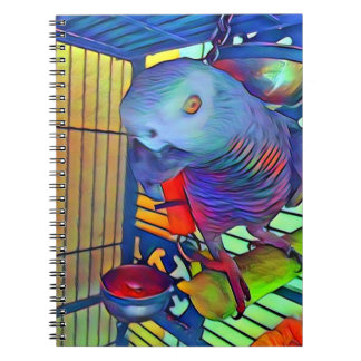 African Grey Notebook #2