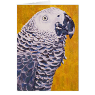 African Grey Parrot Card