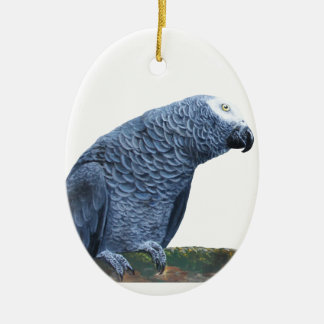 African Grey Parrot Ceramic Oval Decoration