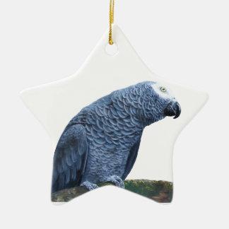 African Grey Parrot Ceramic Star Decoration