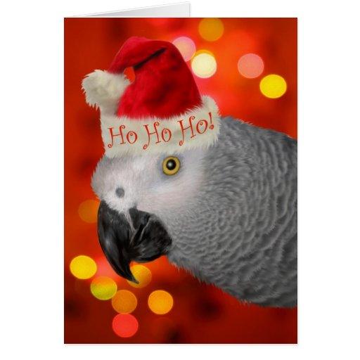 African Grey Parrot Christmas Card Santa Hat