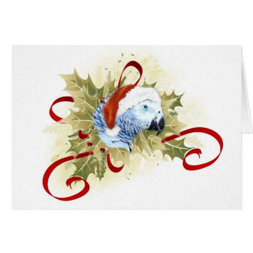African Grey Parrot Christmas Cards