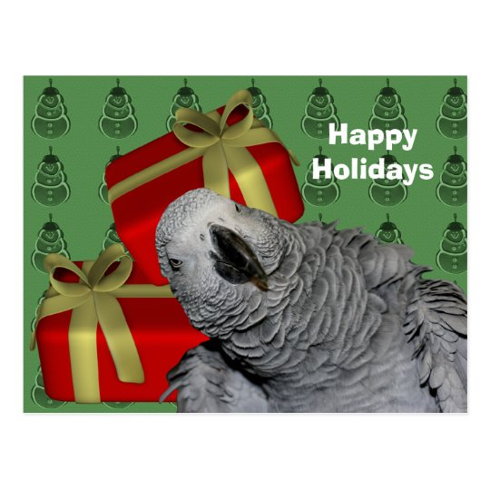 African Grey Parrot Christmas Holiday Postcard