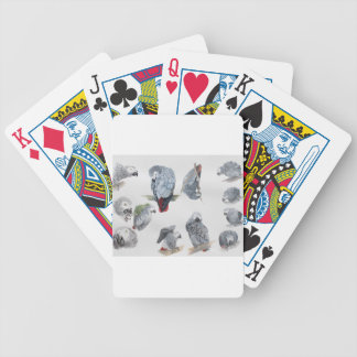 African Grey Parrot. Exclusive designed by Griff Bicycle Playing Cards