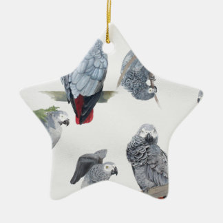 African Grey Parrot. Exclusive designed by Griff Ceramic Star Decoration