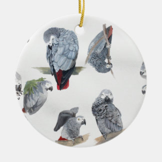 African Grey Parrot. Exclusive designed by Griff Round Ceramic Decoration