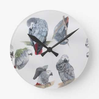 African Grey Parrot. Exclusive designed by Griff Round Clock