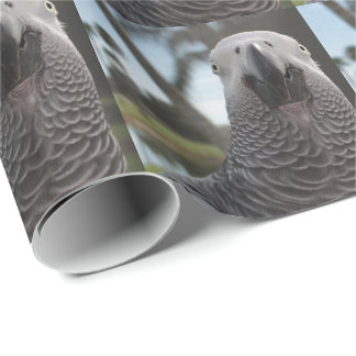 African Grey Parrot Face Close-Up Wrapping Paper