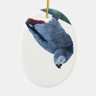 African grey parrot gifts ceramic oval decoration