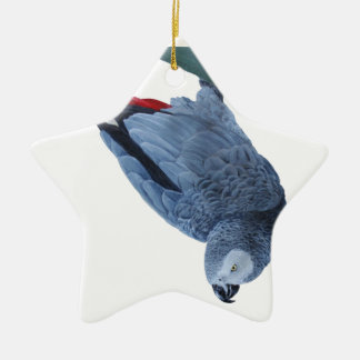 African grey parrot gifts ceramic star decoration