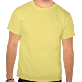 African Grey Parrot Golden Sunset T Shirt