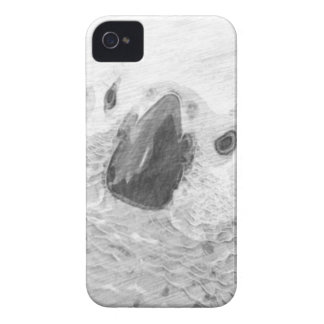 African Grey Parrot iPhone 4 Cover