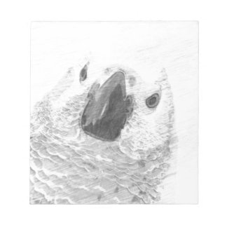 African Grey Parrot Notepad