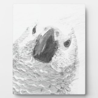 African Grey Parrot Plaque