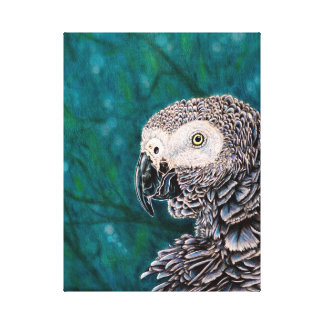 African Grey Parrot Print on Stretched Canvas