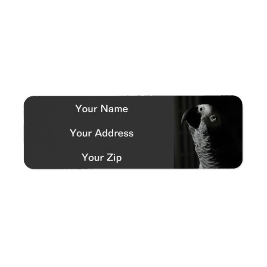 African Grey Parrot Return Address Labels