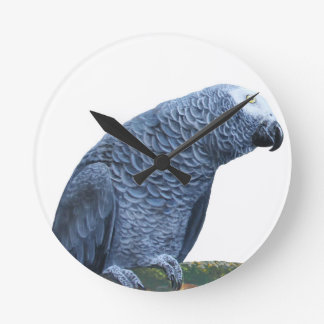 African Grey Parrot Round Clock