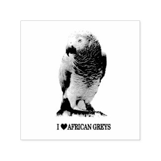 African Grey Parrot Self-inking Stamp