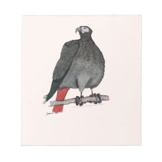 african grey parrot, tony fernandes notepads