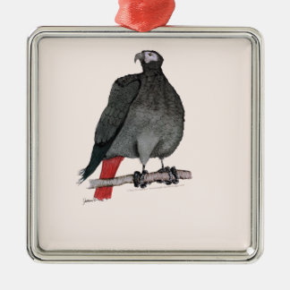 african grey parrot, tony fernandes Silver-Colored square decoration