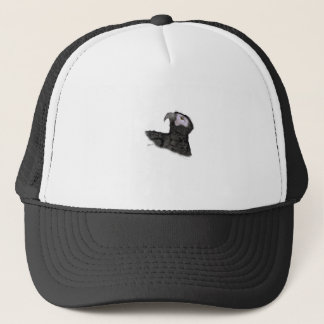 african grey parrot, tony fernandes trucker hat