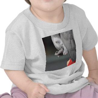 African Grey Parrot Shirt