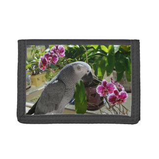 African Grey Parrot with Orchids Trifold Wallet