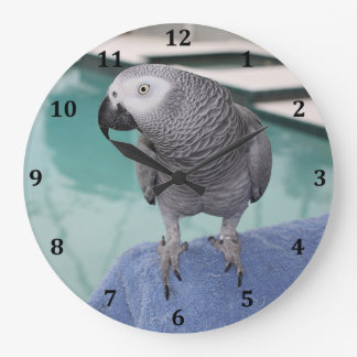 African Grey Pool Party Wall Clock