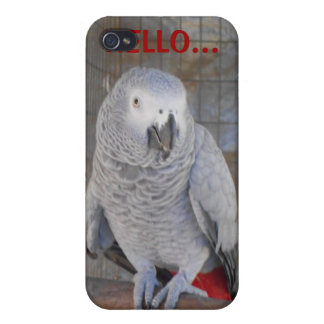 "African Grey ""Rudy"" iPhone 4/4S Cover"