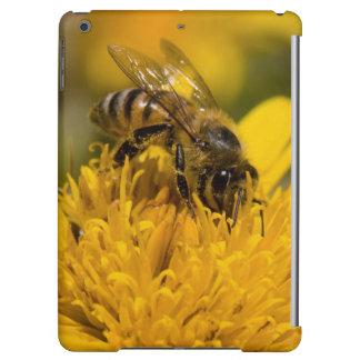African Honey Bee With Pollen Sacs Feeding iPad Air Case