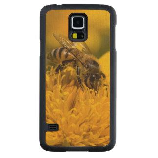 African Honey Bee With Pollen Sacs Feeding Maple Galaxy S5 Slim Case