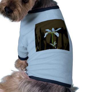 African Iris Fortnight Lily Flower Ringer Dog Shirt